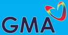 GMA Network Logo (from Radio GMA Cebu & Barangay RT 2014)