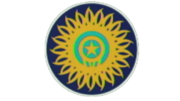 India Cricket logo classic