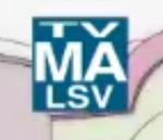 TV-MA-LSV