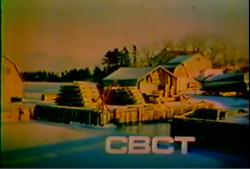 CBC T