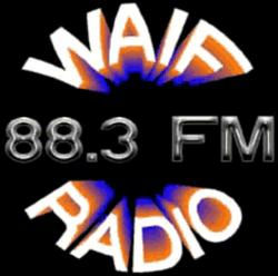 WAIF Cincinnati 1999