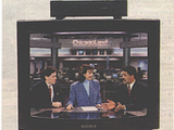 Chicagoland Television