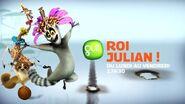 Roi-Julian-Gulli