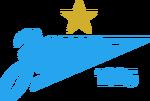 FC Zenit 1 star 2015 logo