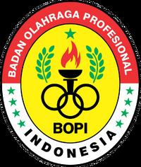 Badan Olahraga Profesional