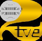 TVE21976