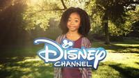 Disney Channel 2012 Logo