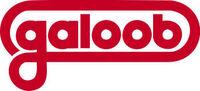 Galoob logo