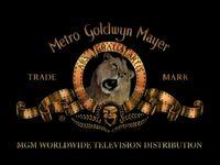 3 mgm tv