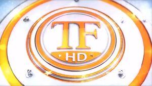 TV Fama 2013