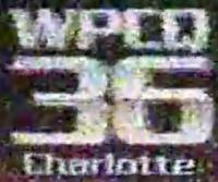 Q36WPCQ1981
