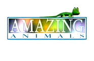 Amazing animals title card