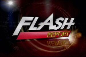 Flash Report 2011 logo