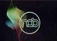NAB 1982