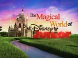 The Magical World of Disney Junior