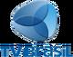 TV Brasil logo