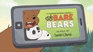 We Bare Bears Intertitle