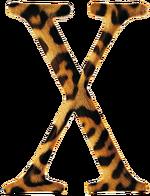 Mac OS X 2002