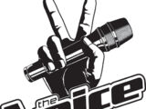 The Voice (TV series)