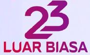 23 Years Indosiar