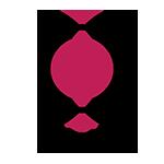 Mtv logo 13