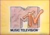 Mtvbumpers vinyltheif