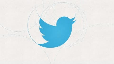 Our New Twitter Bird