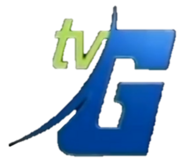 TVG Logo For Station ID 2005