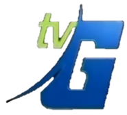 TVG Logo For Station ID 2005