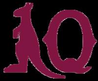 Queensland-state-of-origin-home-shirt-1980-s 896 2