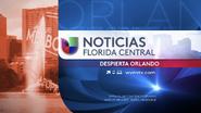 Wven noticias univision florida central despierta orlando package 2015