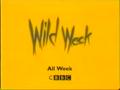 CBBC Wild Week