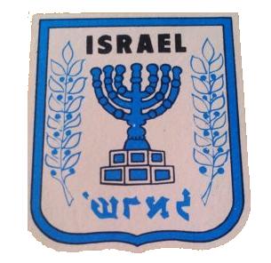 Israel Football Association   Logopedia   FANDOM powered ...