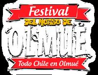 Logohuasoolmue2014