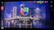 Wvea univision tampa bay id december 2017