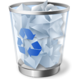 Recycle Bin Windows Vista full