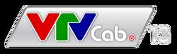VTVCab 13