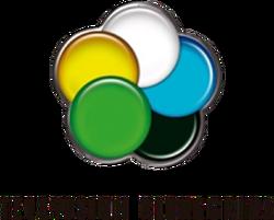 Televisión Rionegrina (Logo 2014 - 2)