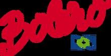 BoleroRCN1998