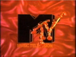 MTVFrenchFries