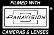 PanavisionLogoInverted