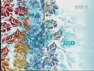 TVP1 2004-2010 (19)