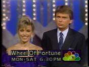 WALA Wheel 1991