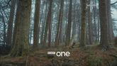 BBC1OnenessForest