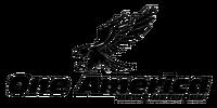 One America News Network logo