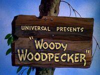 Woody woodpecker logo original