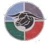 Northern Bulls 1997 logo