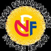 NFF 100 yr