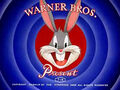 Looney Tunes studio card 3