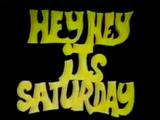 Hey Hey It's Saturday